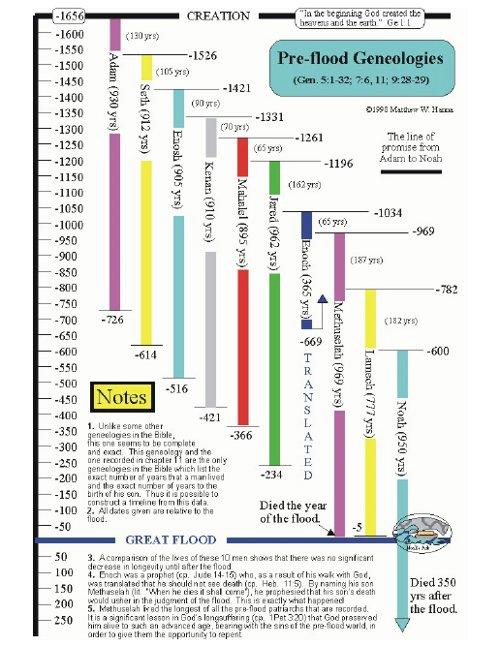 Pre-Flood Genealogies Timeline Chart